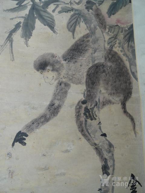 涛 绘画的灵猴寿桃图