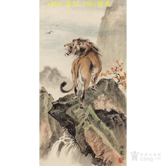 809戈湘岚狮吼悬崖卡通小鸭子表情包图_809戈湘岚狮吼悬崖图图片