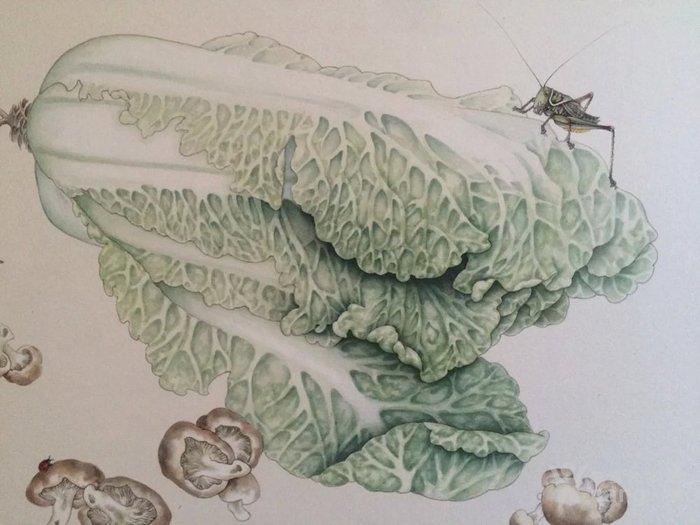 工笔 白菜 蝈蝈 工笔 白菜 蝈蝈 工笔 白菜