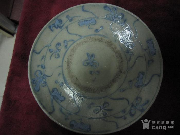 清早期蓝料彩灵芝纹中盘