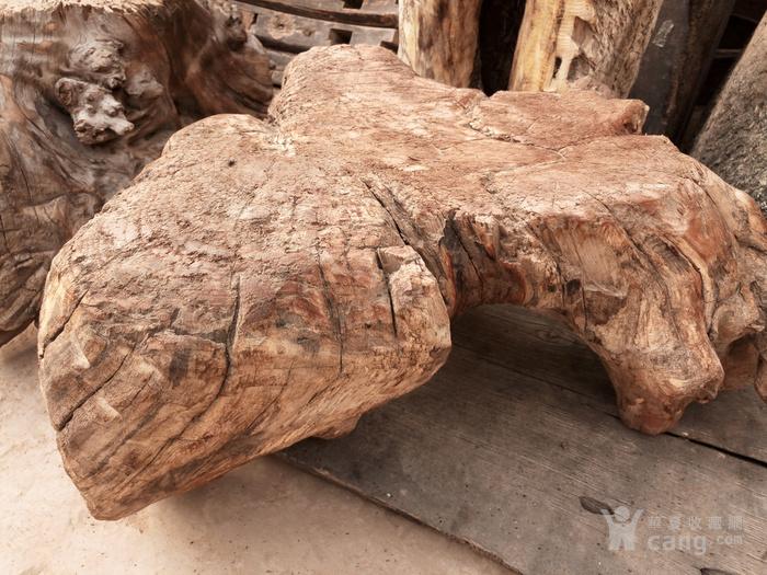 香椿木纯天然根雕