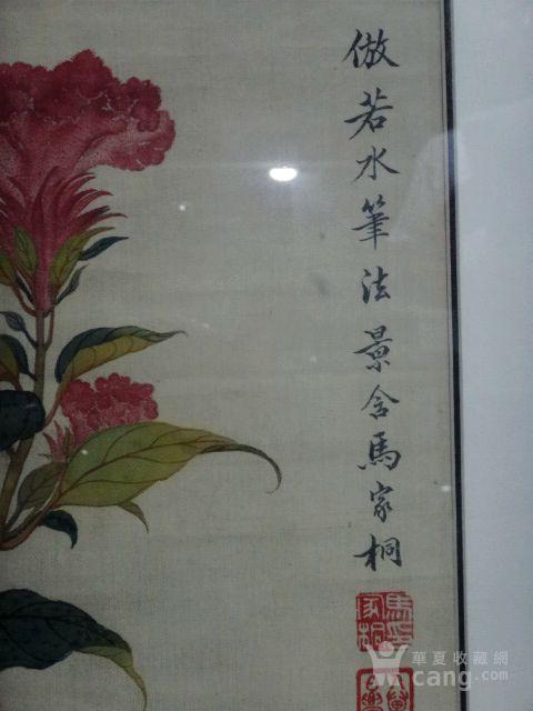 马家桐.花卉