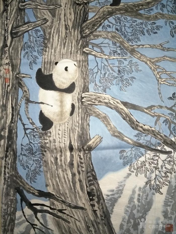 方楚雄.熊猫图_方楚雄.熊猫图价格_方楚雄.熊猫大初中生是判逆年龄多图片