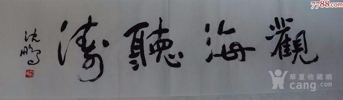 沈鹏,草书