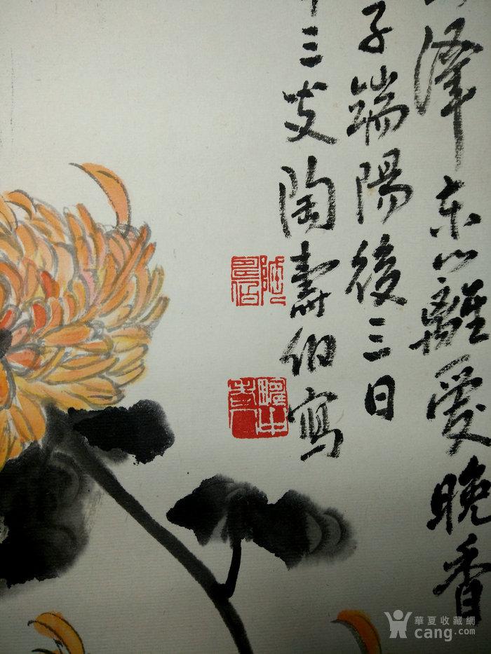 赵叔孺张大千弟子书画篆刻家陶寿伯绘秋菊图纸本立轴于万石楼图3