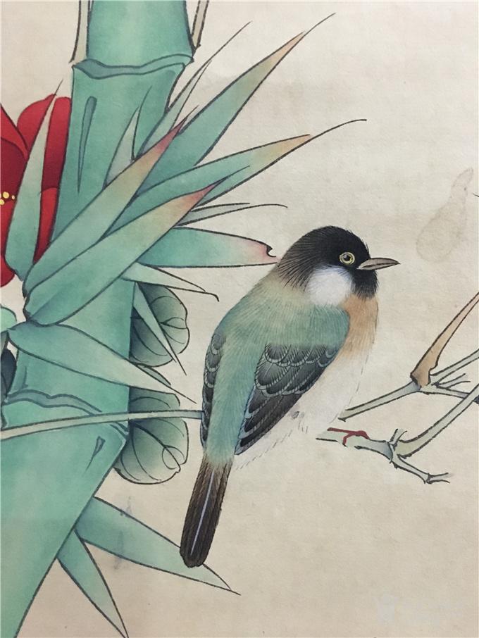 田世光竹鸟