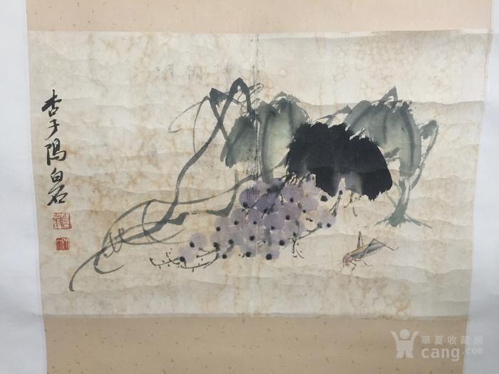 花鸟鱼虫画