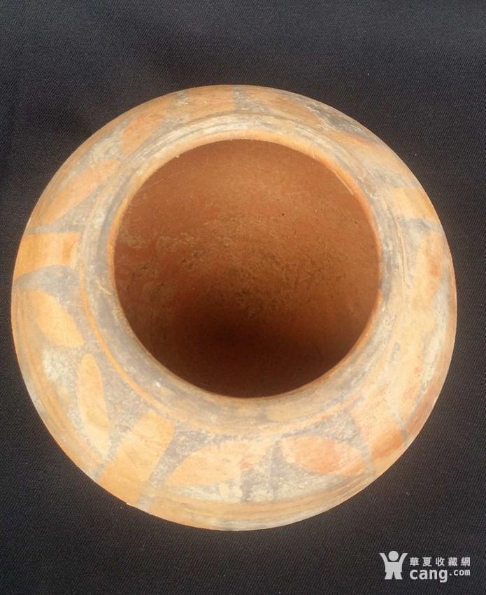 精美!仰韶文化彩陶罐