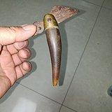 清代牛角鱼刀