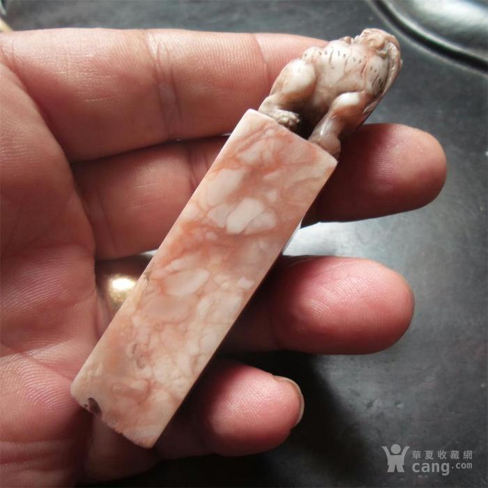 清末民国老寿山石狮钮印章