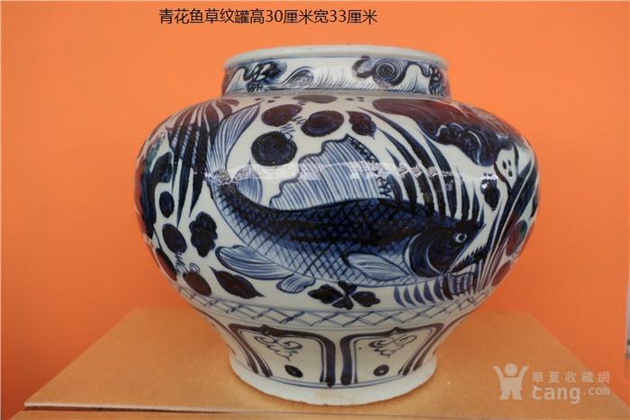 青花鱼草纹罐