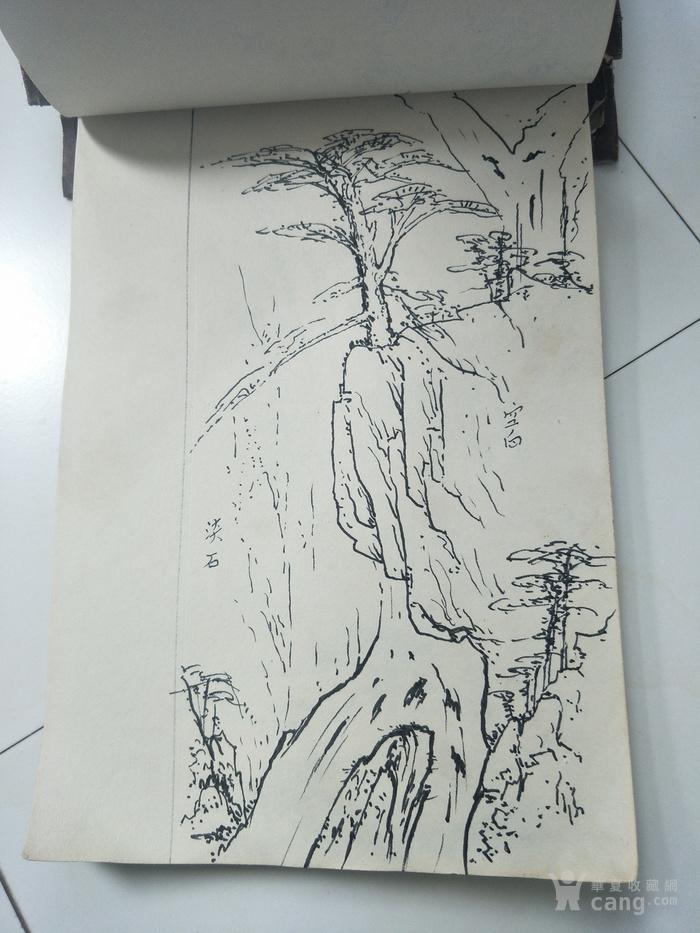 黄山风景区管委会专业画家,中国美术家协会会员,黄山市美术家协会副