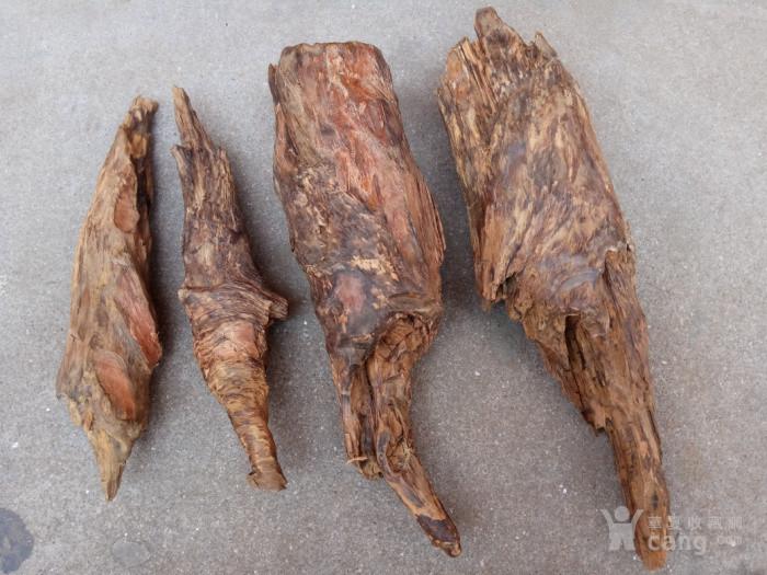 百年风化脱骨松明琥珀南沉香松丁料8.1斤