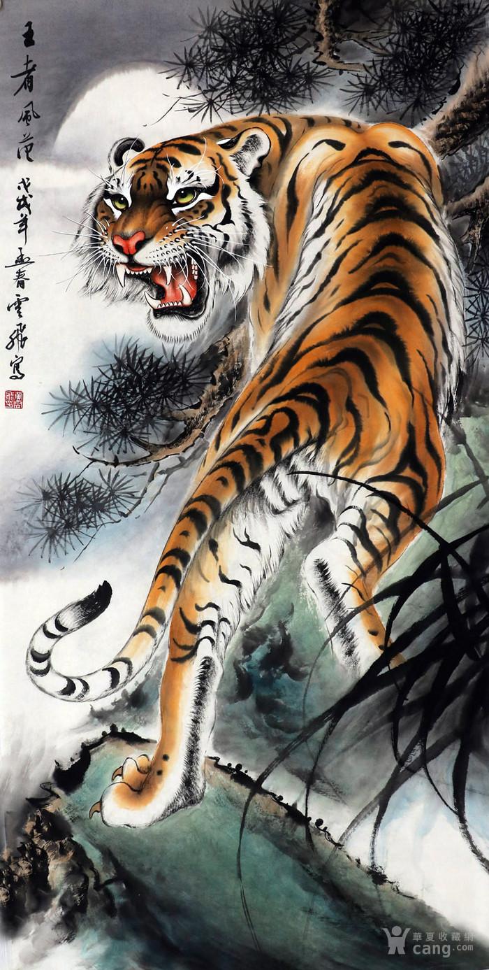 黄云飞国画字画手绘四尺老虎猛虎图走兽上山虎下山虎图