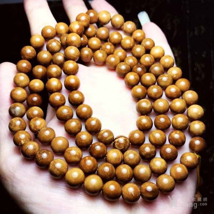 手感超棒的高抛光精品库克菩提8mm正圆珠108佛珠念珠手链