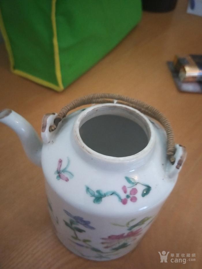 同治花卉虫草壶