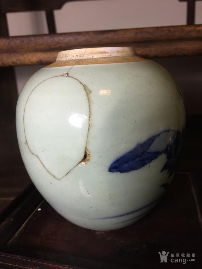 清乾隆豆青青花莲花翠鸟纹罐