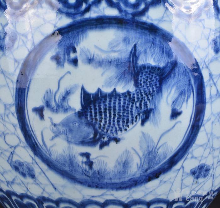 清 青花 鱼草纹 大缸图8