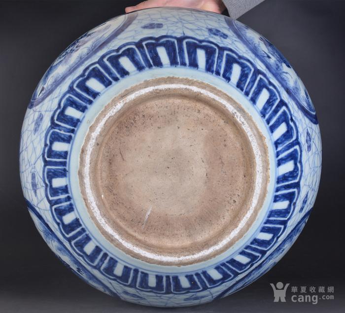 清 青花 鱼草纹 大缸图11