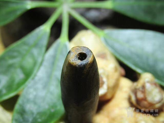 纯天然精品天珠 有些年头 正宗藏区 圣山 九眼页岩两眼