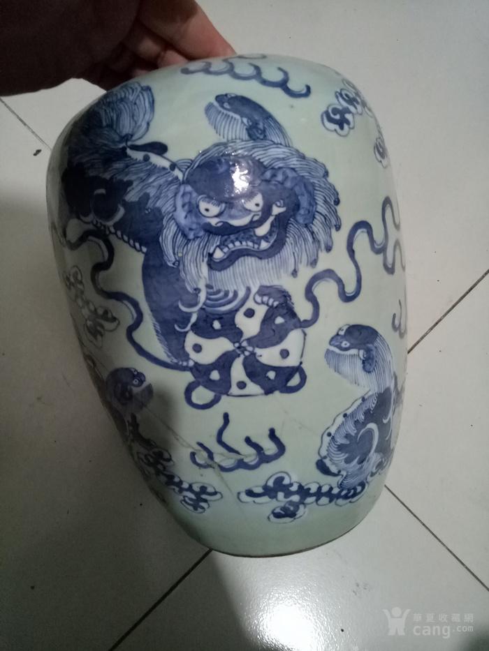 清中期豆青青花狮子大号罐