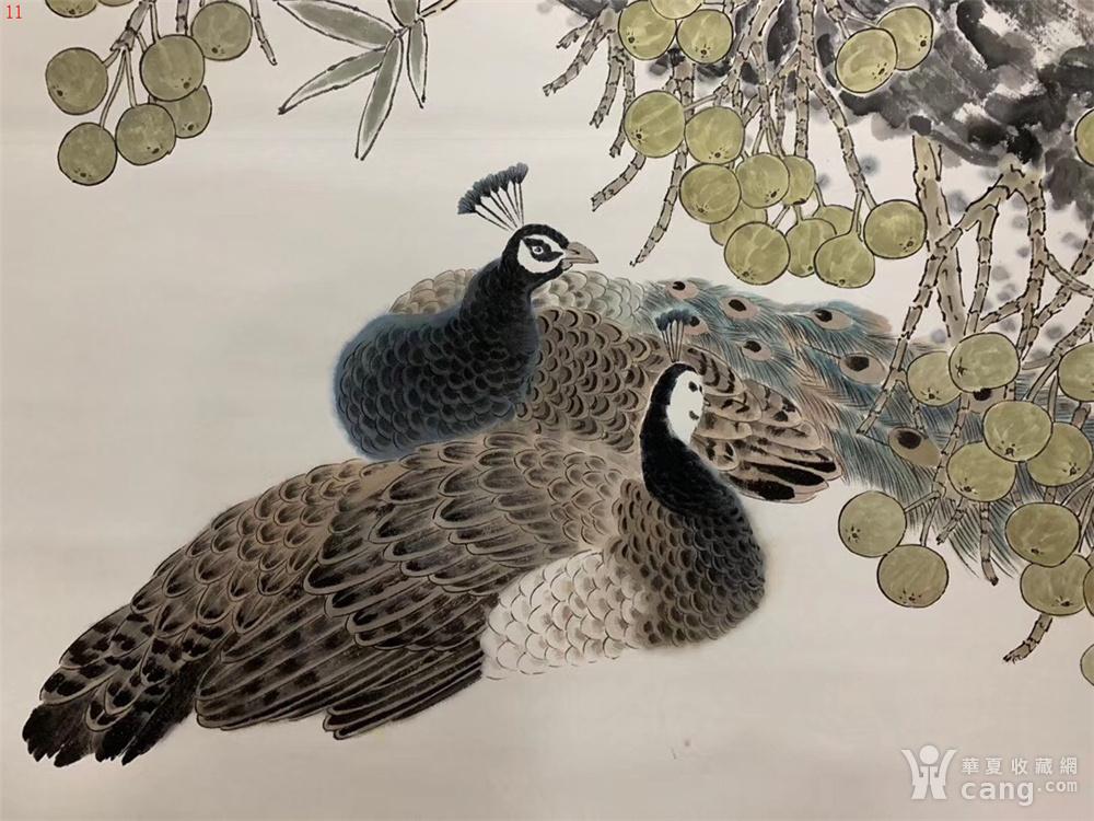 方楚雄初中图教师的区别小学教师孔雀和图片